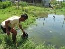 Phát bệnh ung thư vì cả làng uống nước ruộng