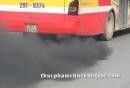 Khí thải diesel - Thủ phạm gây bệnh ung thư