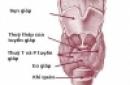 Hiệu quả và sự an toàn trong điều trị bệnh cường giáp trạng và bệnh basedow  bằng  iốt phóng xạ (I-131)