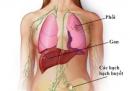 Chăm sóc bệnh nhân ung thư gan: Giai đoạn tái phát