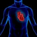 Các khối u lành tính ở tim
