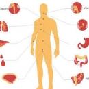Mỗi năm Việt Nam có 150.000 người mới mắc bệnh ung thư