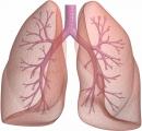 Nhật xác định gene gây ung thư phổi