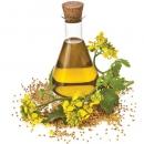Trị loét dạ dày từ dầu thực vật