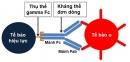 Vai trò của xét nghiệm đa hình gen FCGR trong điều trị ung thư