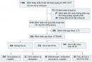 So sánh các phác đồ hóa trị tân bổ trợ cho ung thư bàng quang xâm lấn cơ