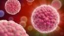 Liệu pháp thay hormone giảm nguy cơ ung thư tụy